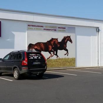 Der neu verlegte Filzboden im Reiterfachmarkt